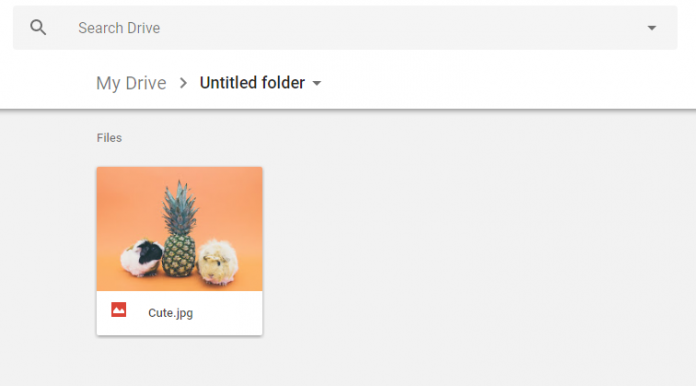 How to Hide File Inside Google Drive Snap 3